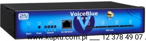 VoiceBlue Next 2GSM